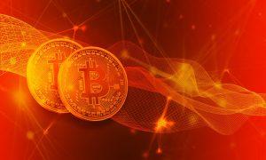 Bilanz der Zentralbank laut Bitcoin Profit